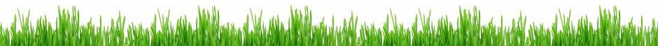 GreenLovers - Site de rencontre Bio & écolo 100% gratuit !